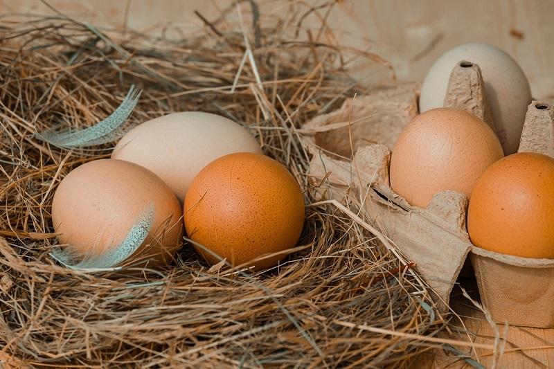 Яйца на сене